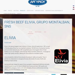 FRESH BEEF ELIVIA, SNS