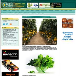 Global Fresh Produce and Banana News