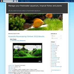 Manage your freshwater aquarium, tropical fishes and plants: Acuavida Aquascaping Contest 2010 Results