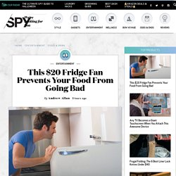 FridgeCool Review: This $20 Fridge Fan Prevents Food From Going Bad