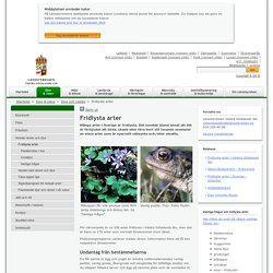 Fridlysta arter - Länsstyrelsen i Västra Götalands län