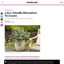4 Eco-Friendly Alternatives To A Lawn