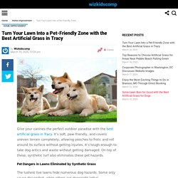 Turn Your Lawn Into a Pet-Friendly Zone with the Best Artificial Grass in Tracy