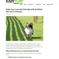 Make Your Lawn Pet Friendly with The Help of Artificial Pet Turf in Orlando
