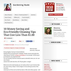 10 Money Saving and Eco-Friendly Cleaning Tips That Cost Less Than $1.00 | Gardening Nude