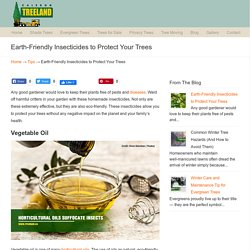 Earth-Friendly Insecticides to Protect Your Trees