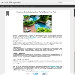 Aquatic Management: 4 Eco-Friendly Methods You Must Try To Maintain Your Pool