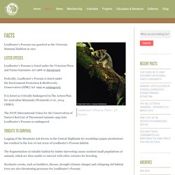 Friends of Leadbeater's Possum