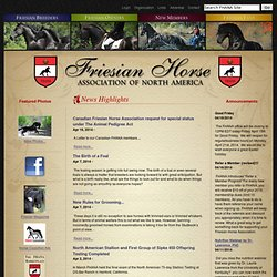 Friesian Horse Association of North America - FHANA