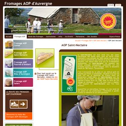 Fromage AOP d'Auvergne: Saint-Nectaire (Fromage Saint Nectaire AOP)
