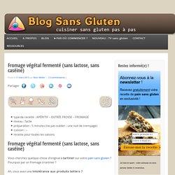 Fromage végétal fermenté (sans lactose, sans caséine)