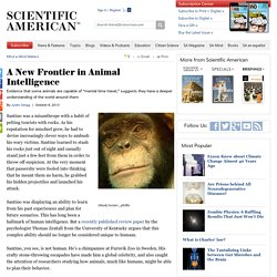 A New Frontier in Animal Intelligence