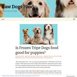 Is Frozen Tripe Dogs food good for puppies?