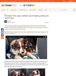 'Frozen' fan pup wakes up singing along to 'Let It Go' - Pets