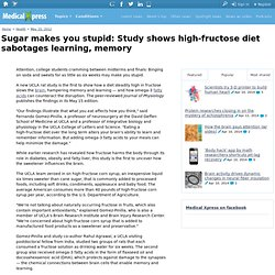 Sugar makes you stupid: Study shows high-fructose diet sabotages learning, memory