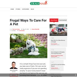 Frugal Ways To Care For A Pet