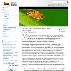 No Fruit Fly Evolution Even after 600 Generations