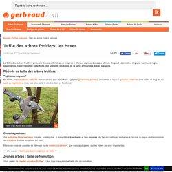 Taille fruitière des arbres à pépins : pommier, poirier