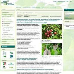 Favoriser les espèces fruitières sauvages