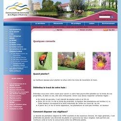Plantons le décor, arbres, arbustes, fruitiers, pommes, prairies fleuries, insectes, biodiversité