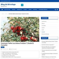 Comment tailler les arbres fruitiers ? (Guide et conseils)