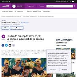 Les fruits du capitalisme (1/4) : Le régime industriel de la banane