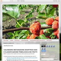 Fruits Seeker: classificazione kaki