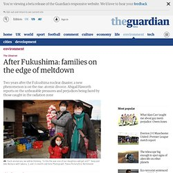 After Fukushima: families on the edge of meltdown | Environment | The Observer
