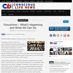 Fukushima – What's Happening and What We Can Do
