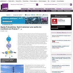 Après Fukushima faut-il amorcer une sortie du nucléaire en France ? - Sciences