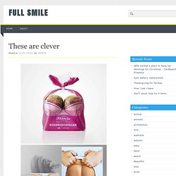 FULL SMILE » These are clever
