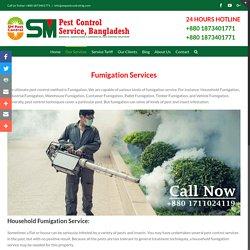 SM Pest Control Service in Dhaka, Bangladesh