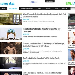 Fun Amazing Articles Trending On The Web