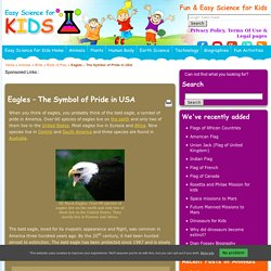 Fun Eagle Facts for Kids
