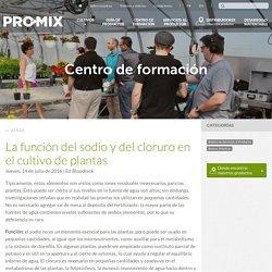 La función del sodio y del cloruro en el cultivo de plantas