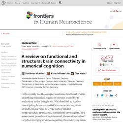 A review on functional and structural brain connectivity in numerical cognition