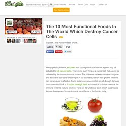 The 10 Most Functional Foods In The World Which Destroy Cancer Cells