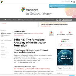 Editorial: The Functional Anatomy of the Reticular Formation