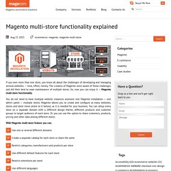 Magento multi-store functionality explained