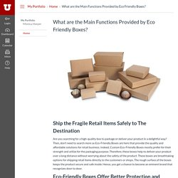 What are the Main Functions Provided by Eco Friendly Boxes?: Home: My Portfolio