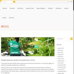 Fundación Daya Cannabis medicinal: una breve guía sobre usos y efectos - Fundación Daya