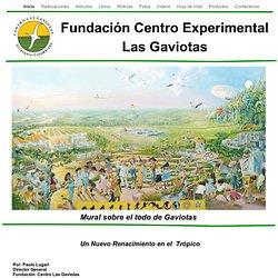 Fundación Centro Experimental Las Gaviotas