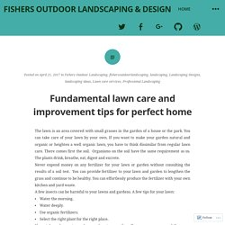 Fundamental lawn care and improvement tips for perfect home