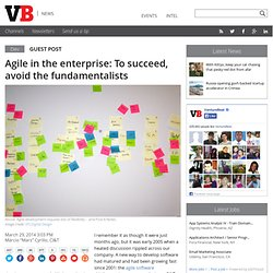 Agile in the enterprise: To succeed, avoid the fundamentalists