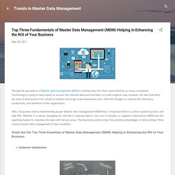 Top Three Fundamentals of Master Data Management (MDM) Helping in Enhancing the ROI of Your Business