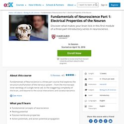 Fundamentals of Neuroscience Part 1: Electrical Properties of the Neuron