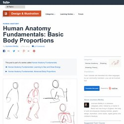 Human Anatomy Fundamentals: Basic Body Proportions
