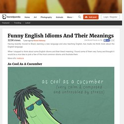 Funny English Idioms And Their Meanings