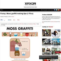 Moss graffiti making tips