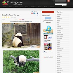 Enjoy The Panda Therapy | Have, Panda, Get, Ill, Come